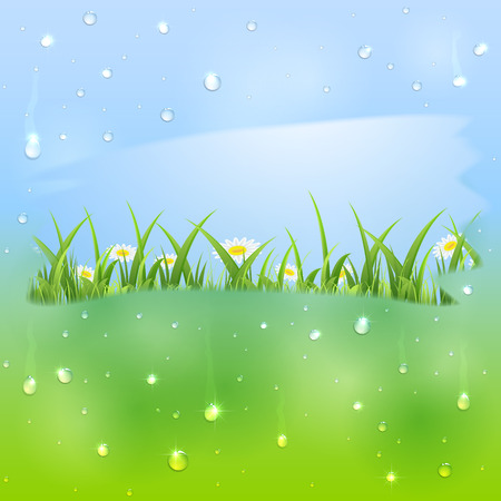 Shiny water drops on window and flowers with grass, illustration  Vector