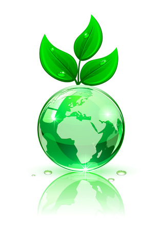 shining star: Shiny Globe with green leaves on white background, illustration