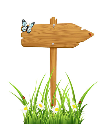 blank road sign: Isolated wooden sign in a grass with butterfly and ladybugs, illustration