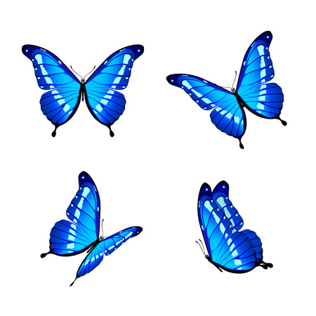 Set of four blue butterflies isolated on white background, illustration