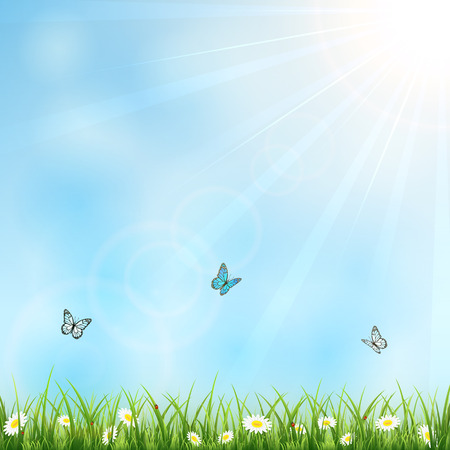 Summer with sun, flowers, butterflies and ladybugs, illustration  Vector