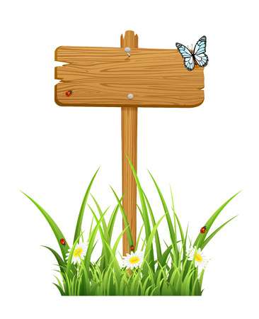stick bug: Wooden sign in a grass isolated on white , illustration