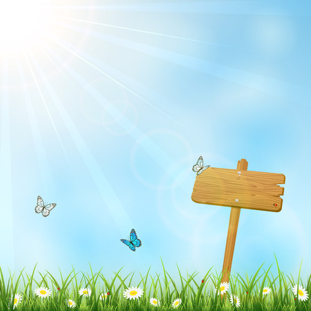 Summer background with wooden sign in grass illustration  Vector