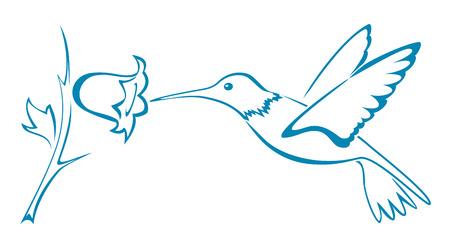 bloom bird of paradise: Blue stylized hummingbirds flying with flower, illustration