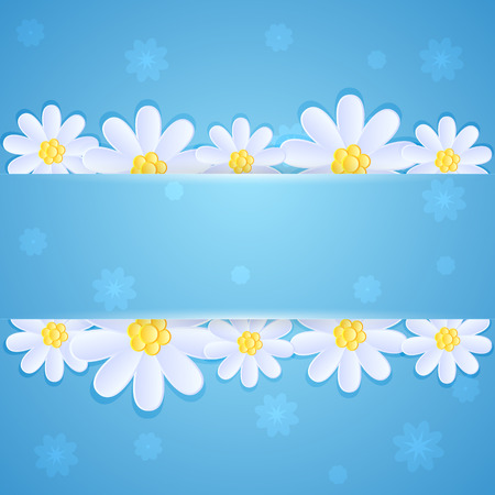 blue daisy: White daisies on blue background with banner, illustration