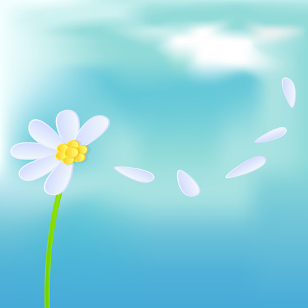 white daisy: White daisy on blue sky background, illustration