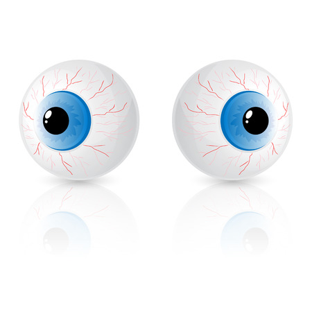 eye ball: Two eyes isolated on white background, illustration.
