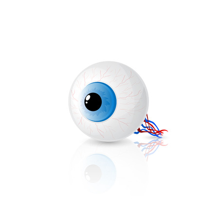 ojo azul: Ojo azul aislado sobre fondo blanco, ilustraci�n.