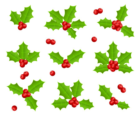 christmas holly: Set of Holly berries isolated on white background, illustration.