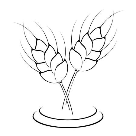 Wheat ears icon isolated on white background, illustration. Vector
