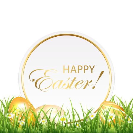 uova d oro: Carta di Pasqua e le uova d'oro in erba, illustrazione. Vettoriali