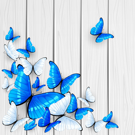 cartoon summer: Blue and white butterflies on wooden background, illustration.