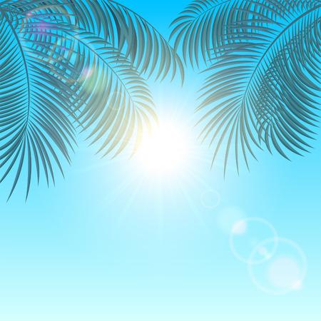 shiny background: Palm leaves on a blue shiny background, illustration.