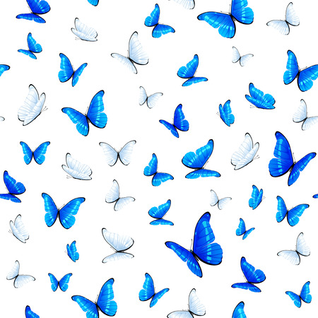 seamless with blue and white butterflies, illustration.