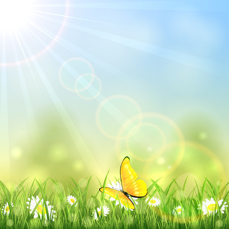 Yellow butterfly and white flowers on sunny background, illustration. Vettoriali