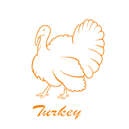 turkey: Orange icon of turkey bird isolated on white background, illustration. Illustration
