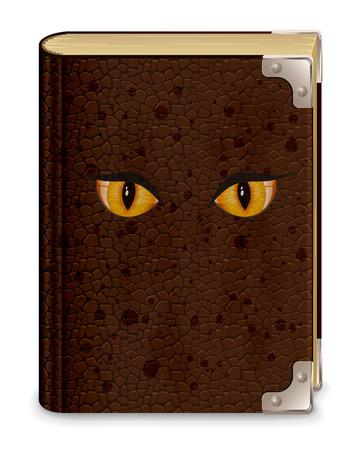 libros antiguos: Viejo libro de cuero con los ojos, aislados en fondo blanco, ilustración.