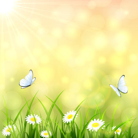 flowers bokeh: Sunny summer background with a butterfly flying above the grass and flowers, bokeh light and sun beams, illustration.