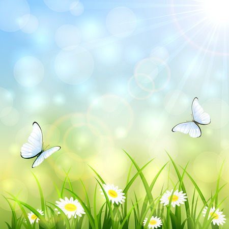 flowers bokeh: Summer natural background with a butterfly flying above the grass and flowers, bokeh light and sun beams, illustration.