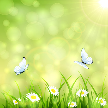 Abstract green summer background with a butterfly flying above the grass and flowers, bokeh light and sun beams, illustration.
