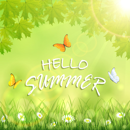 sun flowers: Nature background with flowers in the grass, maple leaves, shinning Sun, flying butterflies and inscription Hello Summer, illustration.