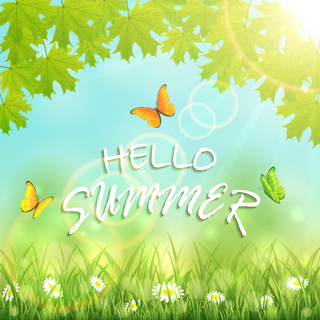sun flowers: Inscription Hello Summer with flowers in the grass, maple leaves, shinning Sun and flying butterflies, illustration.