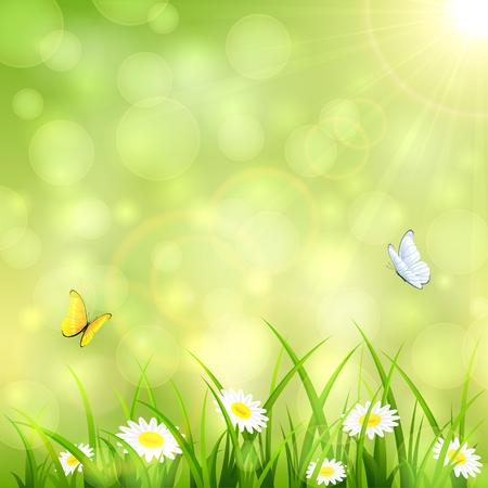 Groene natuur achtergrond met bloemen in het gras, vliegende vlinders en shinning Zon, illustratie.