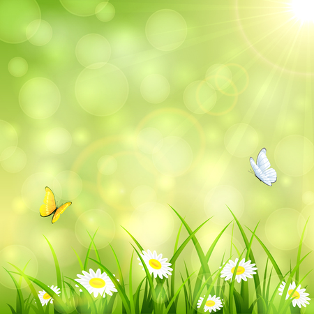 Green nature background with flowers in the grass, flying butterflies and shinning Sun, illustration.
