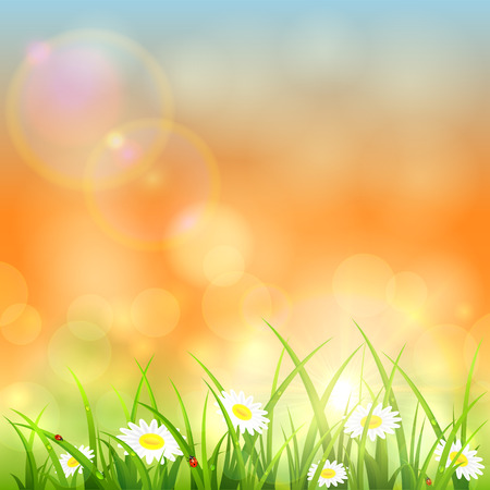 dewdrop: Flowers and grass with water drops against the morning sky and the rising sun, illustration. Illustration
