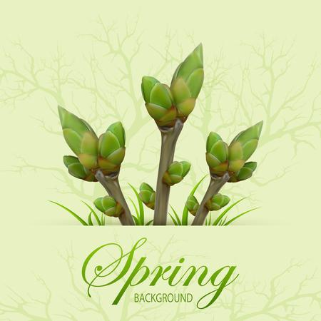 green grunge background: Three spring twigs with buds and grass on green grunge background, illustration.