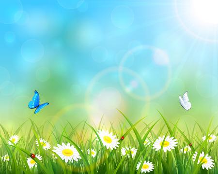 dia soleado: Soleado día de verano y el cielo azul de fondo, mariposas volando por encima de la hierba con flores, ilustración. Vectores