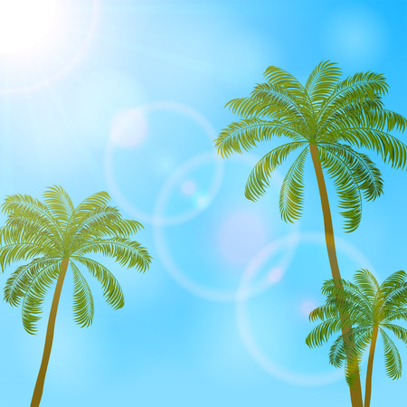 bright sun: Palm trees and bright sun on blue sky background, illustration. Illustration