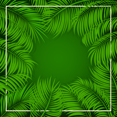 miami south beach: Summer background with palms, frame from palm leaves on green background, illustration.
