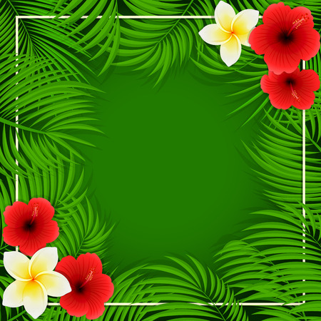 miami south beach: Summer background with palm leaves and Hawaiian flowers, frangipani and hibiscus with palm leaves on green background, illustration.