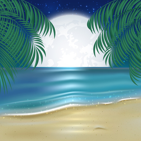 fool moon: Moonlit night on the beach, tropical background with fool Moon, sparkling ocean, sandy beach and palm leaves, illustration. Illustration