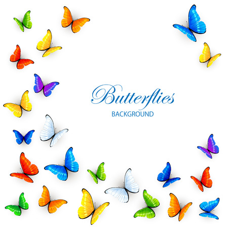 Set of colored butterflies, isolated on white background, illustration. Çizim