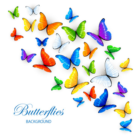 Set of multicolored butterflies, isolated on white background, illustration. Stock Illustratie
