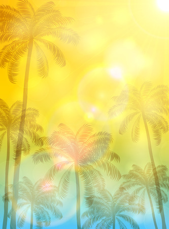 summer background with palms and sun high palm trees and bright