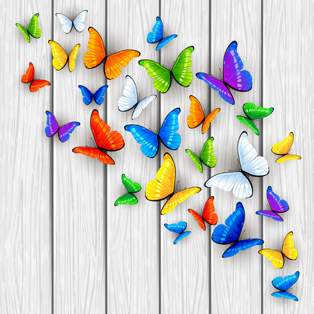 green and black: Set of multicolored butterflies on white wooden background, illustration. Illustration