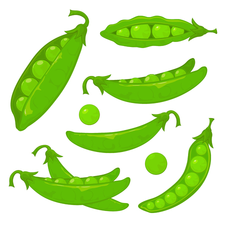 pea: Set of ripe green peas, isolated on white background, illustration.