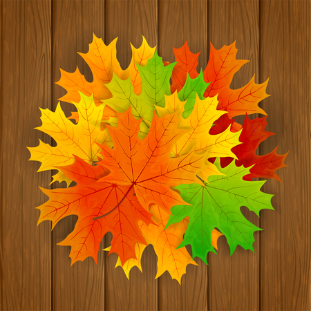 Set of colorful maple leaves on brown wooden background, illustration.