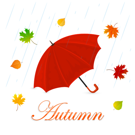 red umbrella: Autumn theme, red umbrella and colorful leaves on a white background with rain, illustration.
