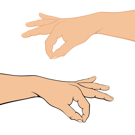 Set of human hands isolated on white background, illustration. Illustration