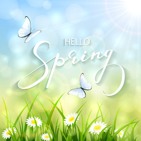 sun flowers: Lettering Spring with bokeh light and sun beams, sunny natural background with a butterflies flying above the grass and flowers, illustration. Illustration