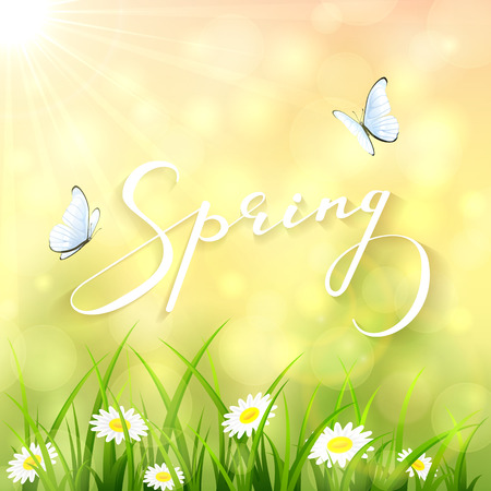 Sunny background, lettering Spring with a butterflies flying above the grass and flowers, illustration. Illustration
