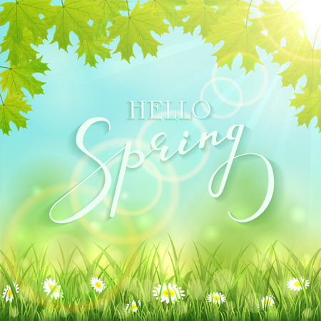 Sunny springtime with maple leaves and flowers in the grass, natural background with lettering Hello Spring and sun beams, illustration.
