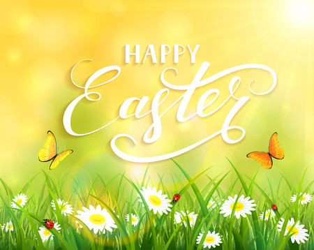 sun flowers: Yellow nature Easter background with a butterfly flying above the grass and flowers, lettering Happy Easter and sun beams, illustration.