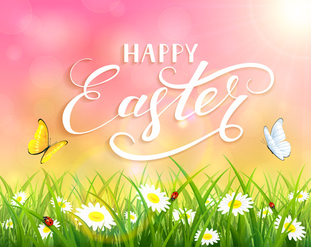 sun flowers: Pink nature Easter background with a butterfly flying above the grass and flowers, lettering Happy Easter and sun beams, illustration.
