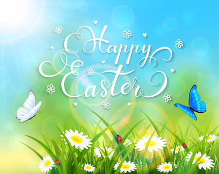 shine: Easter theme with a butterfly flying above the grass and flowers, nature background with sun beams and lettering Happy Easter, illustration. Illustration