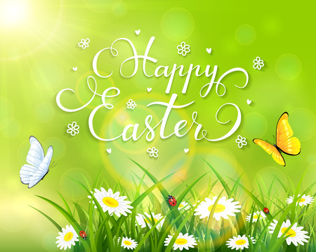 sun flowers: Easter theme with a butterfly flying above the grass and flowers, green nature background with sun beams and lettering Happy Easter, illustration.